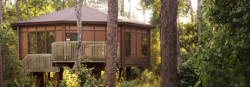 Treehouse Villas At Saratoga Springs Off To Neverland
